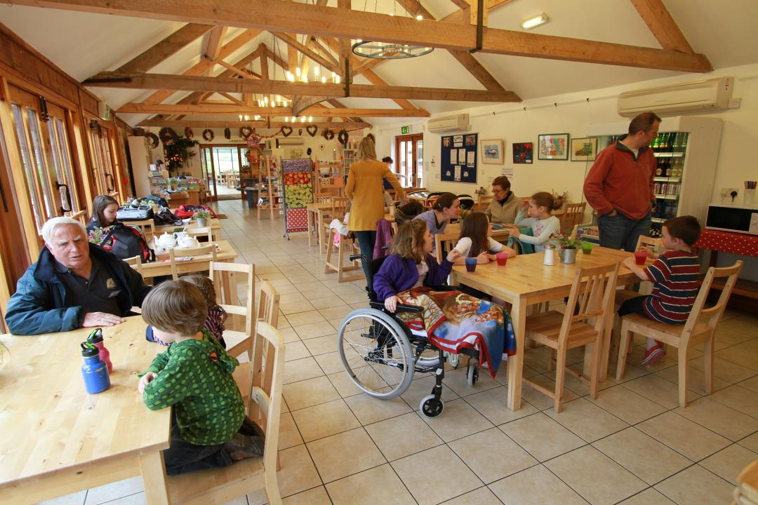 Tea room with visitors enjoying lunch and cake