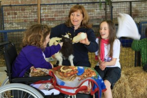 A little girl in a wheelchair feeding a goat kid