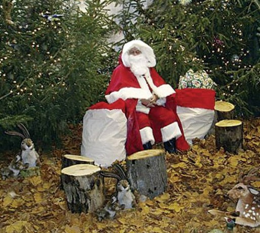 Father Christmas in his woodland retreat with all the animals