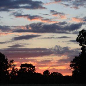 A sunrise on the morning of the Dawn Chorus Walk