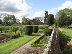 The walled kitchen garden filled with over 100 varieties of fruit trees