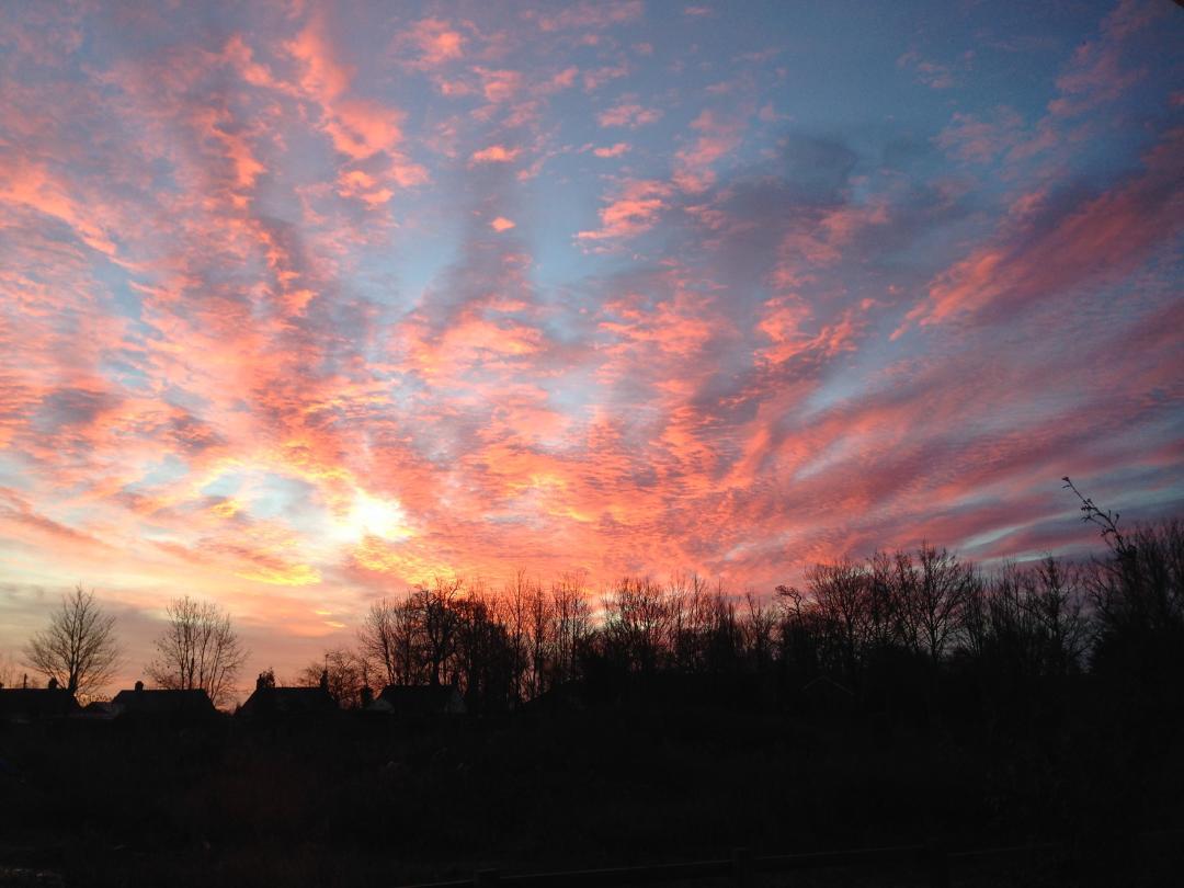 A wonderful sunrise for the Dawn Chorus Walk