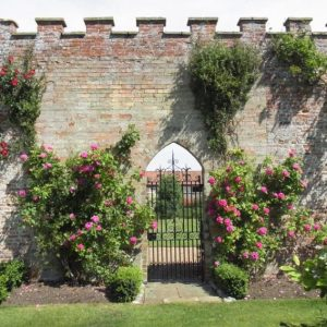 The walled garden gate surrounded by roses