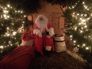 Father Christmas in his woodland retreat