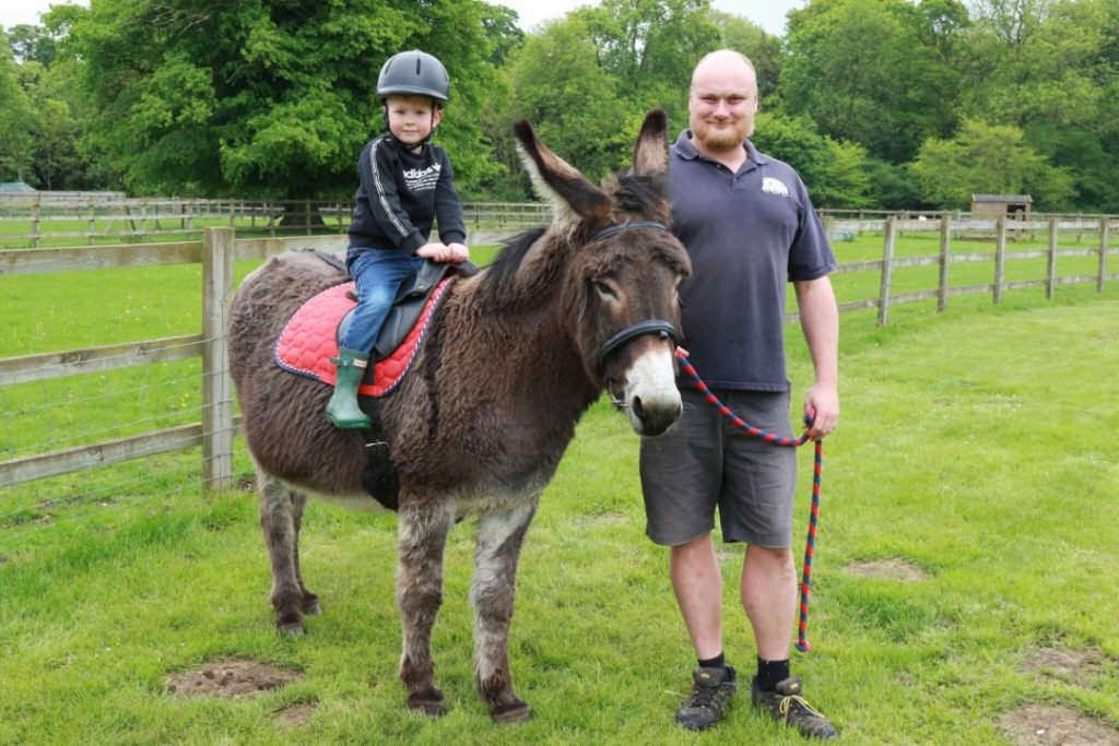 Donkey Treks May 2018